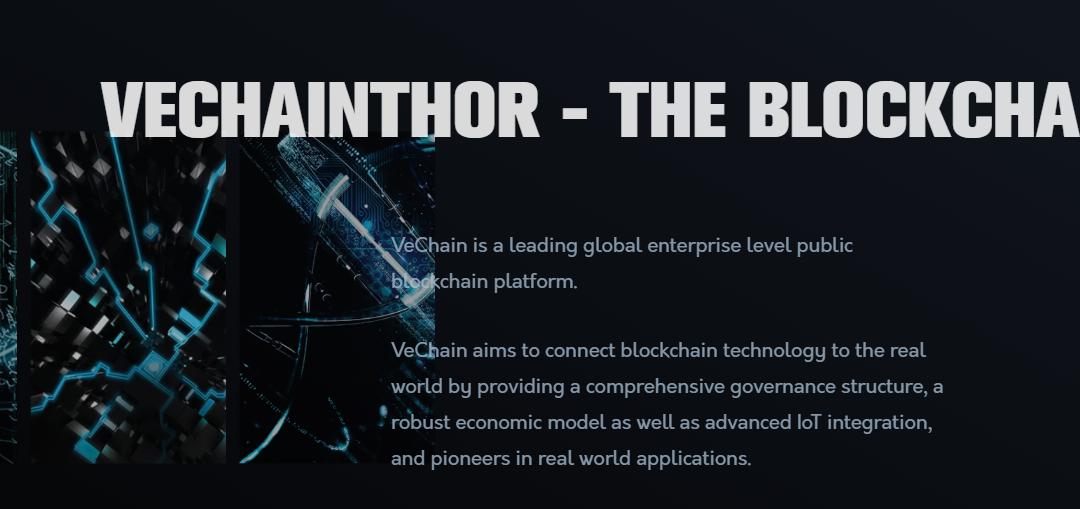 VeChain Thor (VET): extensa revisión de monedas